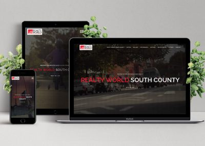 Realty World South County